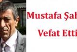 mustafasahin